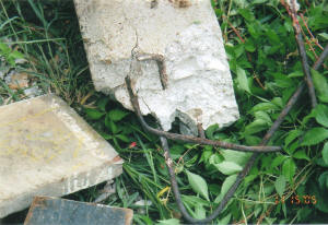 concrete house stumps cracking